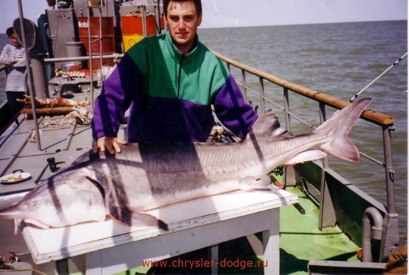 магазин рыболов павшинская пойма